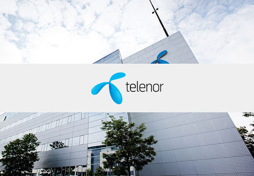 Case Study Telenor