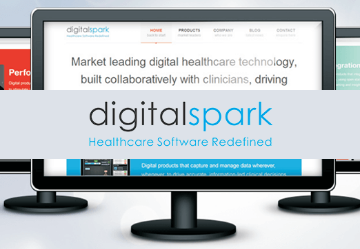Case Study Digital Spark