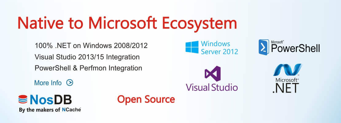 Native to Microsoft Ecosystem